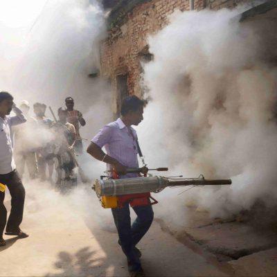Dengue in Bengal