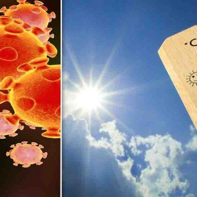 Weather Effect on Corona